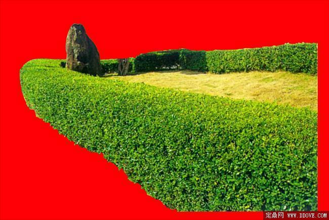 灌木093_效果图植物配景素材