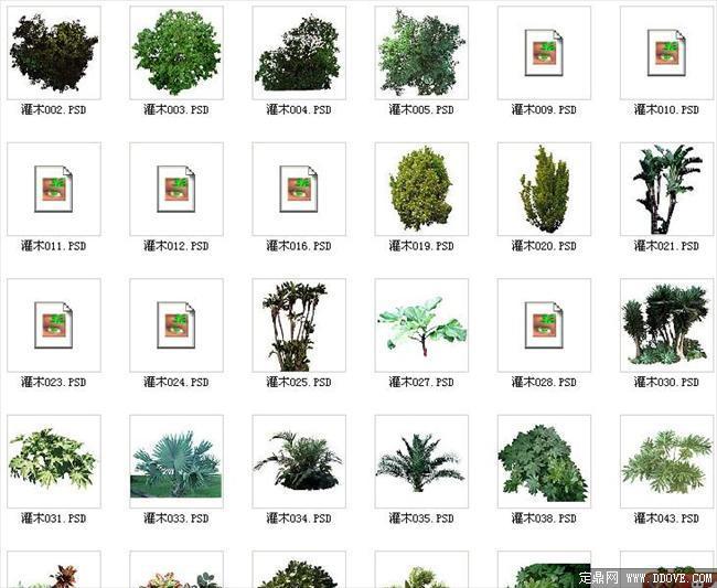 配景素材之灌木