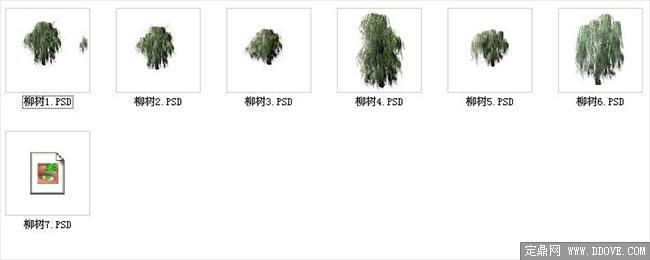 园林,建筑植物配景素材之柳树