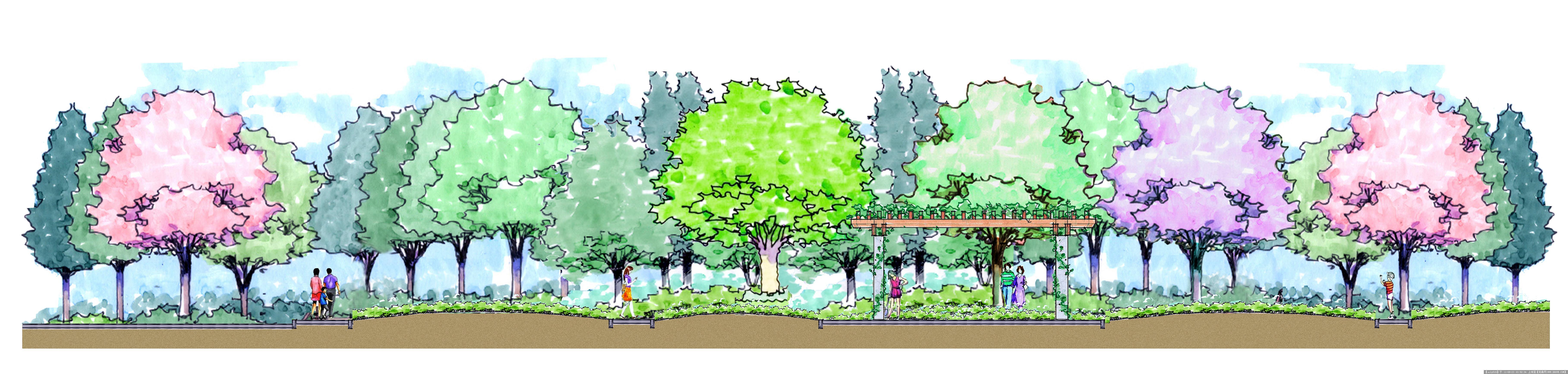 公园景观剖面图